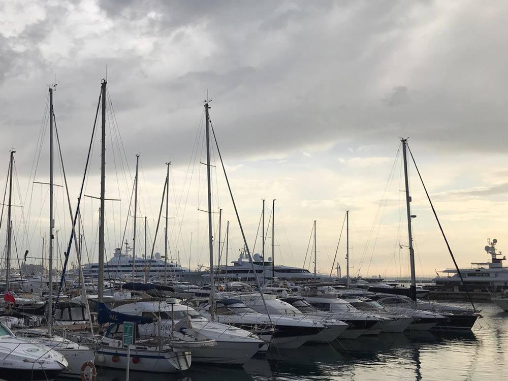 Herrliches Wetter auf Mallorca