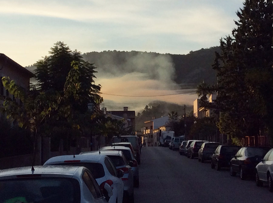 Das Mallorca-Wetter am Morgen