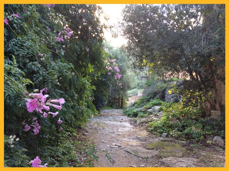 Mallorca: Das Wochenende-Wetter