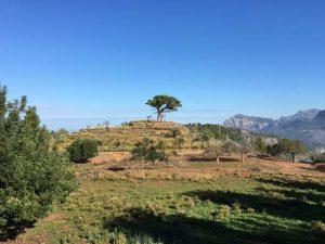 Tramuntana, Mallorca, Wandern