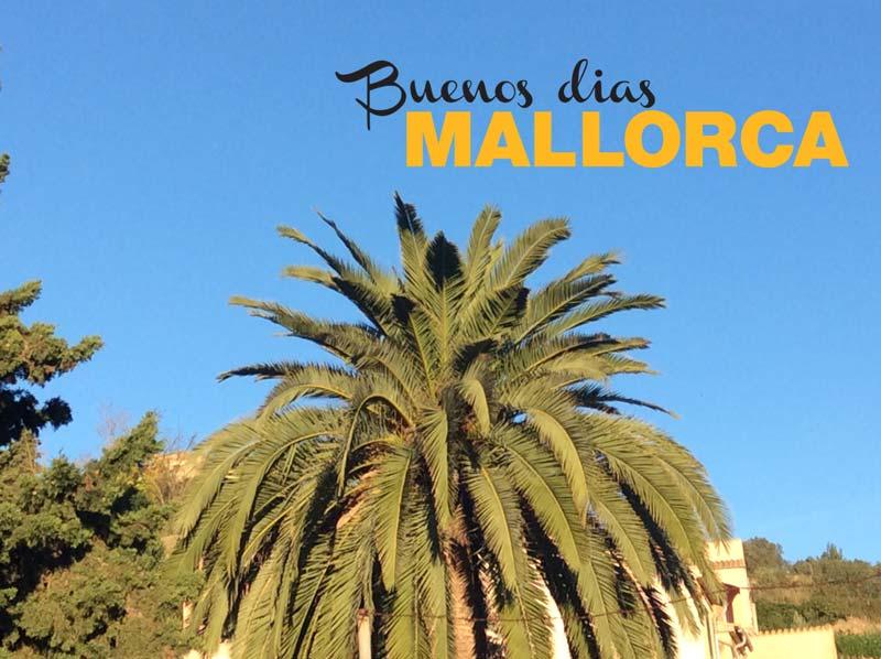 Das Mallorca-Wetter am Dienstag im Dezember