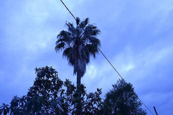 Das Wetter auf Mallorca