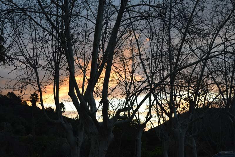 Das aktuelle Mallorca-Wetter